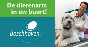 Boschhoven Kliniek voor Dieren